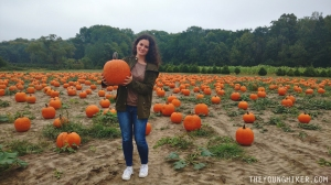 pumpkin-picking-new-jersey