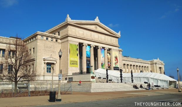 field-museum-chicago